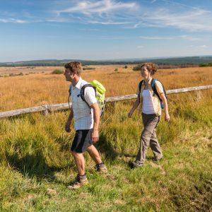 Ontdek de laatste wildernis van de Lage Landen!