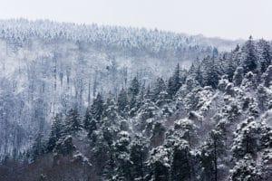 Winter op het hoogplateau - foto: Marijn Heuts