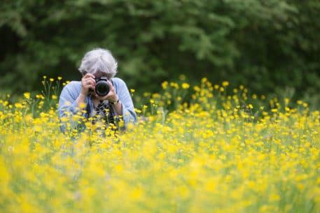 Paradijs voor fotografen - foto: Johan van de Watering