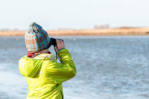 Vogels kijken - foto: Hans Capiau