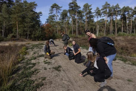 Wolvenspoor gevonden - foto: Jeroen Kloppenburg