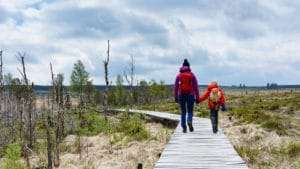 Wandelaars tijdens De Grote Oversteek - foto: Hans Capiau