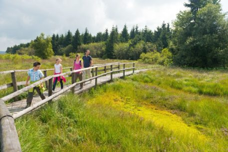 Wandelaars op plankenpad - foto: Dominik Ketz