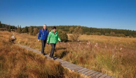 Wandelaars op plankenpad - foto: Eastbelgium