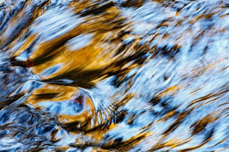 Goldrush - foto: Marijn Heuts